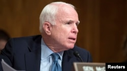 FILE - Senator John McCain (R-AZ) speaks on Capitol Hill in Washington, July 9, 2014.
