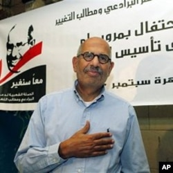 Mohammed ElBaradei, the Nobel Peace Prize winner and former U.N. nuclear chief, marking the first year of his campaign, in Cairo, Egypt, 06 Sep 2010