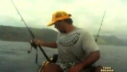 Рибалка не помітив, що зловив... акулу