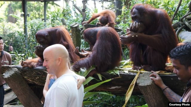 At the Singapore Zoo during its daily 'Jungle Breakfast event (Courtesy/John Beckman)