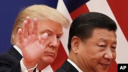 Президенти США та Китаю