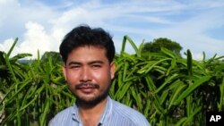 Kim Chheng, 31, is the owner of a dragon fruit farm in Banteay Srey district, Siem Reap province.