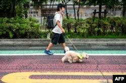 "Kento Takeuchi berjalan dengan anjing jantannya yang berusia empat tahun Kojiro, campuran toy pudel dan Malta, pada pagi hari ""Patroli Wan-Wan"" ke sebuah sekolah dasar di Tokyo, Jepang, 14 Juli 2021. (AFP)"