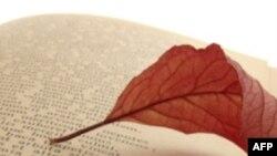 Đọc thơ và diễn dịch thơ