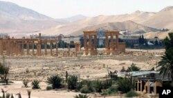 Palmira shahri