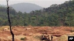 Des mineurs en quête d'or sur le site de Baomahun, en Sierra Leone