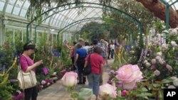 Posetioci botaničke bašte u Njujorku