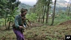 FILE - A woman works in the field of Loi Bangoti's farm in Ngiresi near the Tanzanian town of Arusha.