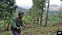 Agricultora na Tanzânia (Foto de Arquivo)