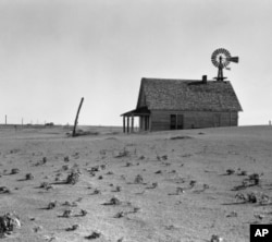 In the 1930s, the once-fertile Great Plains turned into the Dust Bowl after generations of plows broke up the soil.