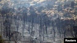 Para petugas pemadam kebakaran mulai membendung kebakaran hutan di negara bagian Arizona (foto: dok).
