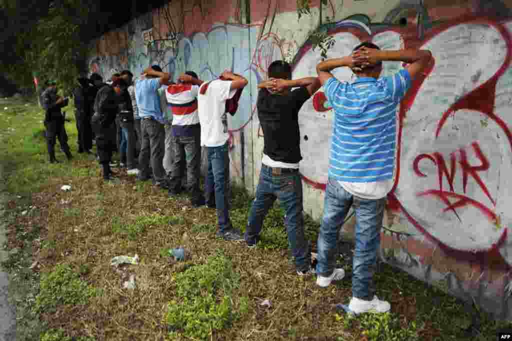 Des membres du gang MS-13 lors d'une arrestation au Salvador, le 20 septembre 2012