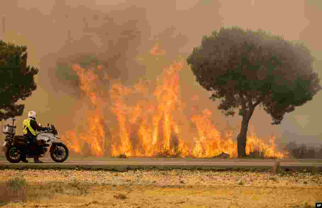 A forest fire near Mazagon in southern Spain has forces the evacuation of around 1,000 people and is threatening Donana National Park, one of the country's most important nature reserves and a UNESCO World Heritage site since 1994, and famous for its biodiversity, June 25, 2017.