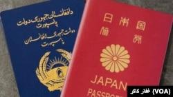 日本護照和阿富汗護照。