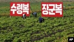 지난해 9월 북한 황해북도의 농촌 풍경. 김일성, 김정일에 대한 충성을 다짐하는 구호가 걸려있다.
