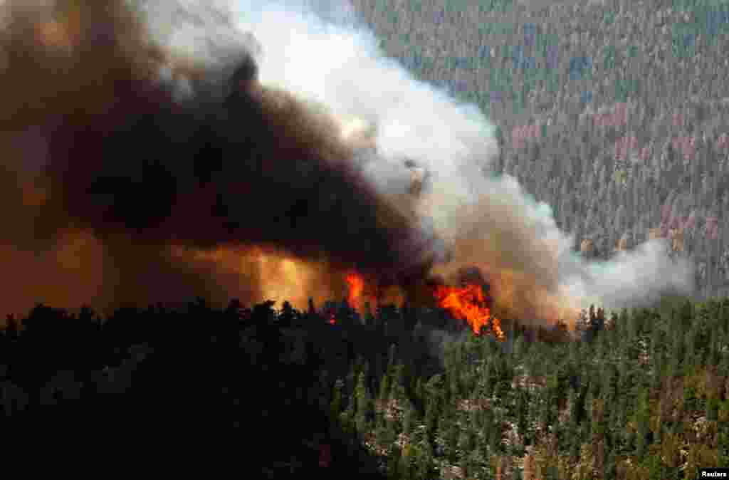 Fire rages through the forest in the High Park fire west of Fort Collins, Colorado, June 19, 2012.