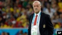 El entrenador está bajo contrato hasta después de la final del Campeonato de Europa en 2016.