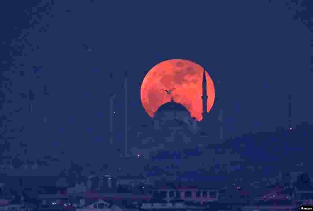 برآمدن ماه کامل از پشت تپه های کاملیکا در استانبول ترکیه