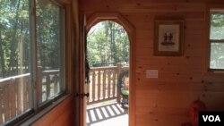 树屋开门面对森林
