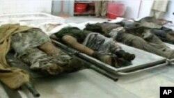 کشته شدن هفت تندرو در جلال آباد