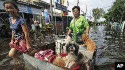 Residents push their dogs and belongings in a make-shift container as they wade through a flooded street in Bangkok, Sunday, October 23, 2011.