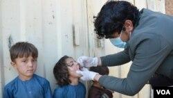 آرشیف: خوست کې یو ماشوم د ګوزڼ ضد واکسین ترلاسه کوي