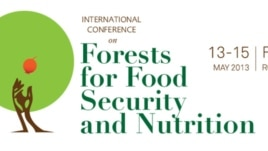 Logo of International Conference on Forests for Food Security and Nutrition