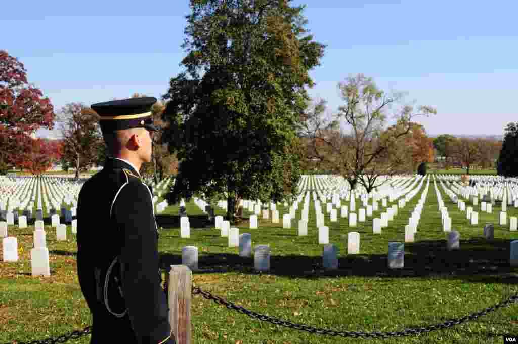 Một quân nhân Thủy quân lục chiến Mỹ đứng trước những ngôi mộ tại Nghĩa trang Quốc gia Arlington, ngày 11 tháng 11, 2012, Arlington, bang Virginia. (Ảnh của độc giả D. Manis)
