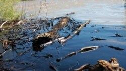 ريزش هزار بشکه نفت به رودخانه پارک جنگلی يلواستون