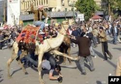 Kahire'de gazetecilere deveyle saldırı