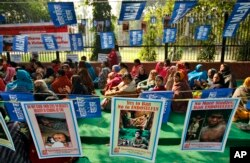 FILE - Activists of the National Federation of Indian Women sit near posters demanding that the pesticide endosulfan be banned at a protest in New Delhi, India, Dec. 10, 2010.