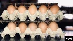 Cartões de ovos