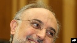 Head of Iran's Atomic Energy Organization Ali Akbar Salehi (file photo)
