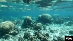 位於美屬薩摩亞群島一個遙遠太平洋環礁湖(視頻截圖)