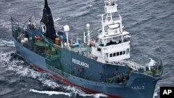 Kapal penangkap paus Jepang Yushin Maru No. 2 berlayar di Samudera Selatan Antartika.