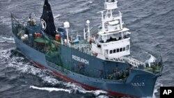 """Kapal pemburu ikan paus Jepang """"Yushin Maru"""" berlayar di selatan Antartika (foto: dok)."""