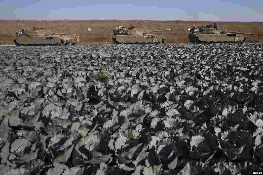 Xe tăng Israel đậu cạnh một cánh đồng bắp cải bên ngoài miền trung Dải Gaza.