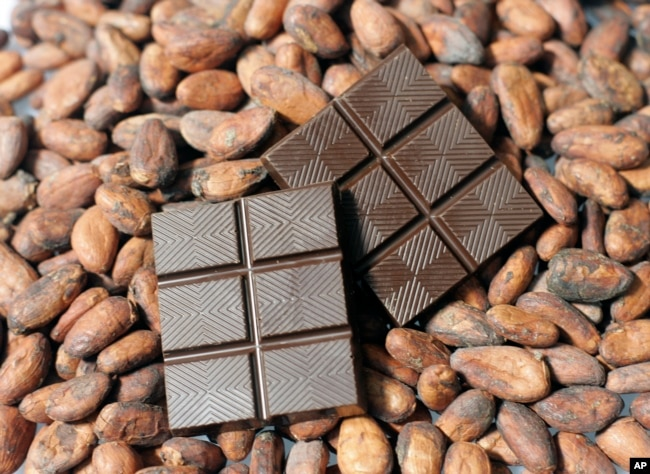 FILE - Finished dark chocolate is shown atop cacao beans at the new TCHO chocolate factory in San Francisco, Calif., Monday, Aug. 25, 2008.(AP Photo/Eric Risberg)