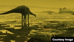 An artist's impression of sauropod dinosaurs on the Isle of Skye. (Credit: Jon Hoad)