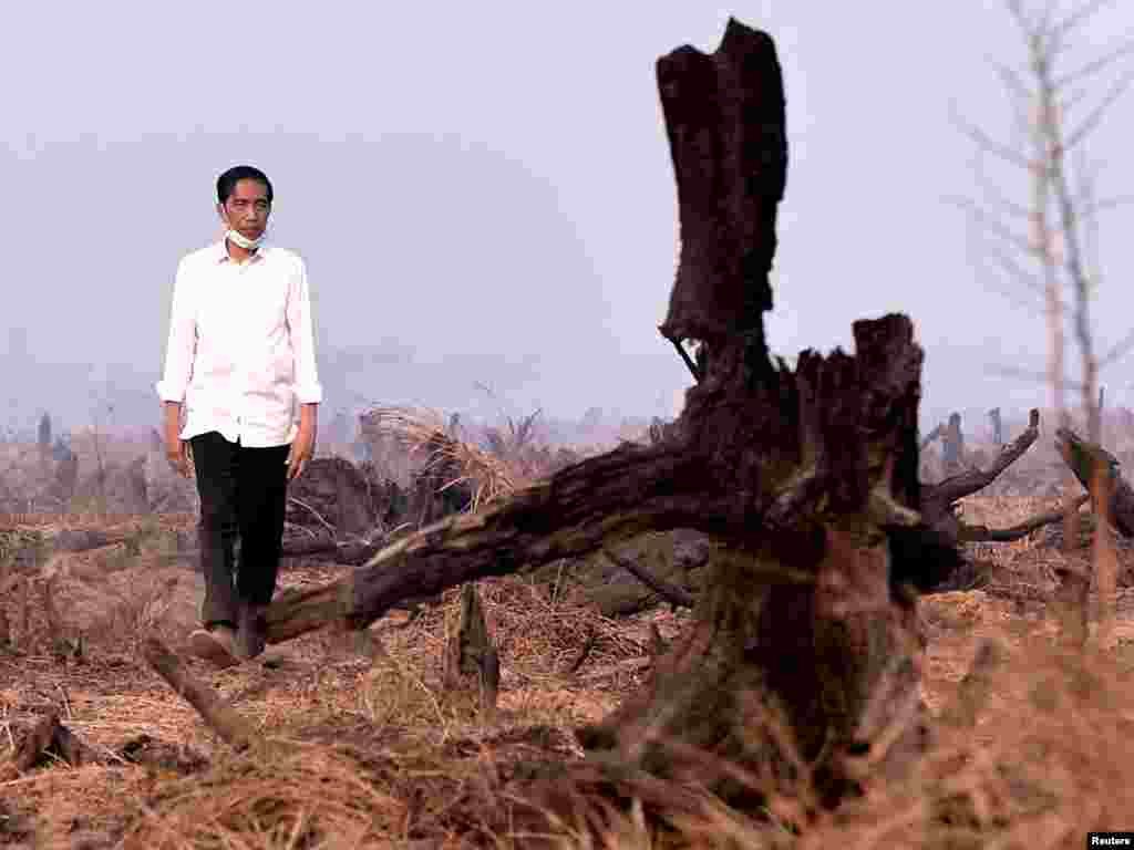 Indonesian President Joko Widodo inspects the aftermath of a recent forest fire during a visit in Banjarbaru, south Kalimantan province in this photo provided by Antara Foto.