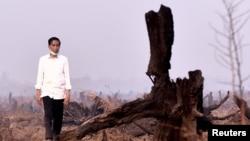 Presiden Joko Widodo memeriksa kebakaran hutan di Banjarbaru, provinsi Kalimantan selatan, Indonesia, 23 September 2015. (Foto: dok. Antara Foto)