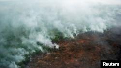 Kebakaran hutan terlihat dari helikopter Badan Nasional Penanggulangan Bencana (BNPB) di Pelalawan, Riau (10/6).