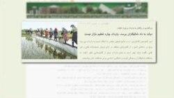 دولت احمدی نژاد به صنعت کشاورزی بها نمی دهد