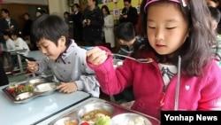 경기도 성남 미금초등학교 학생들이 학교 급식을 먹고 있다. (자료사진)
