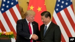 特朗普总统2017年11月9日在北京人民大会堂与习近平握手。