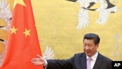 中共总书记、中国国家主席习近平。(资料照)
