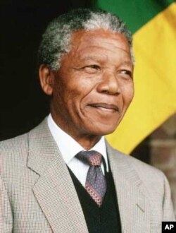 One leading political analyst says many South Africans continue to back the ANC simply because of the party's former leader and liberation legend, Nelson Mandela