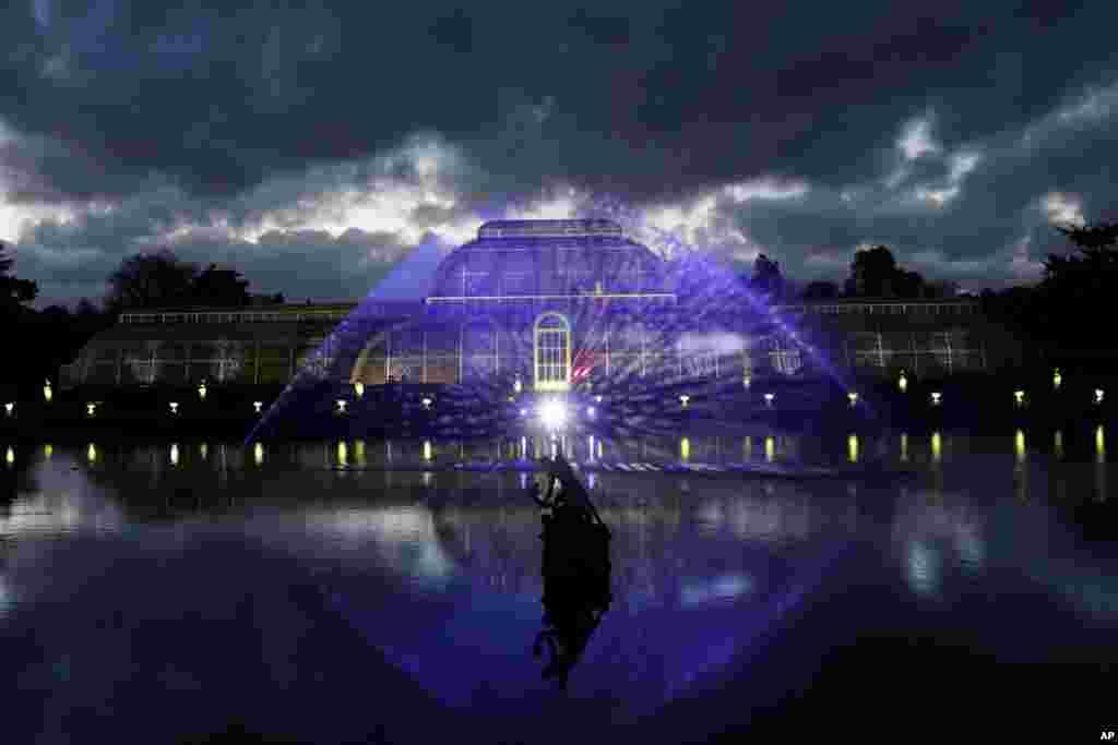 អគារ Palm House ត្រូវបានគេបំពាក់ភ្លើងពណ៌ក្នុងពេលចាប់ផ្តើម «ពិធីបុណ្យណូអែលក្នុងតំបន់ Kew» នៅសួន Kew Royal Botanic Gardens ក្នុងក្រុងឡុងដ៍។
