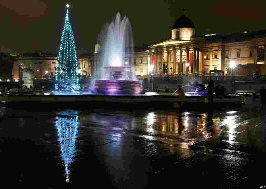 Cây Giáng Sinh tại quảng trường Trafalgar của trung tâm London sau khi đèn được bật lên ngày 1 tháng 12. (Reuters/Olivia Harris)