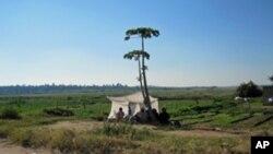 Líder dos Desmobilizados Preso em Maputo